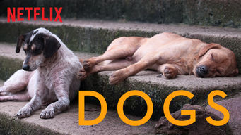 Dogs (2018)