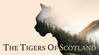 The Tigers of Scotland (2017)