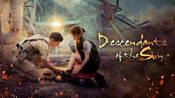 Descendants of the Sun: Season 1