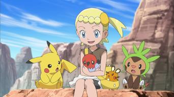 Pokémon The Series: XY: XY: Battles in the Sky!