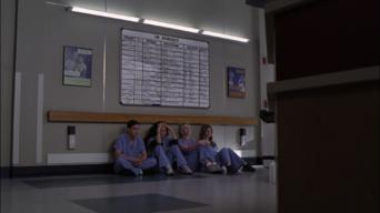 Grey's Anatomy: Season 2: Deterioration of the Fight or Flight Response