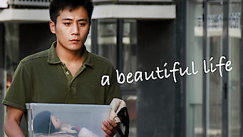 A Beautiful Life (2011)
